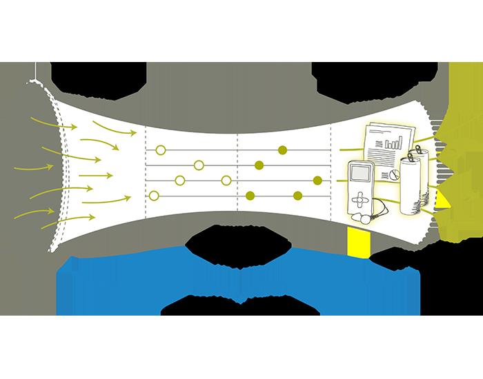 Imagen del programa de aceleración